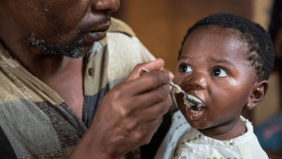 Fighting Malnutrition in Zambia